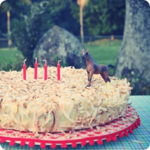bolo de festa com tema fazendinha